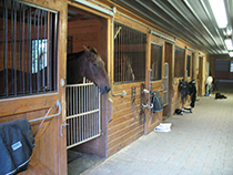 Photo of the barn aisle.